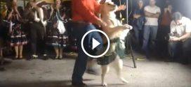 Kutyus két lábra pattan és olyat táncol, hogy nem hiszel a szemednek!