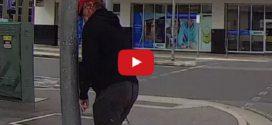 Felrobbantotta a netet a dühöngő gyalogos koppanása