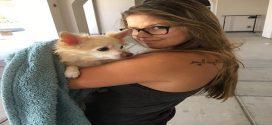 Becsempészte beteg nagymamájához a kórházba a kutyusát